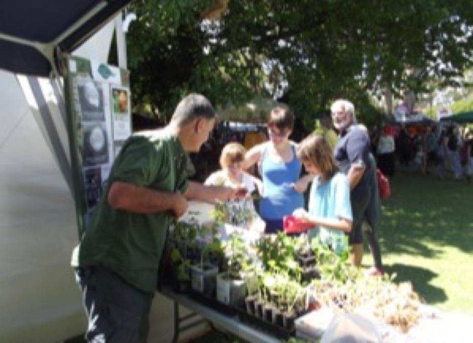 Transition stall at markets 12 2011
