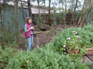 Heather's indigenous garden tour