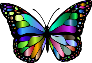 the butterfly is a symbol of emergence