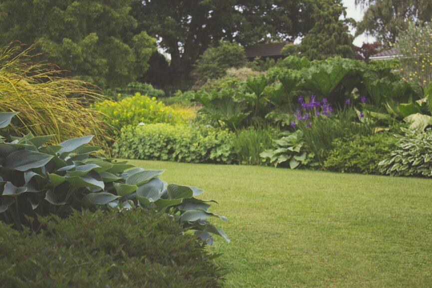 imgae of garden with grassy pathway